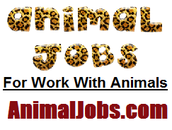 ANIMALJOBS.COM - WORK WITH ANIMALS